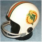Miami Dolphins Helmet Radio